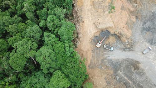 aerial deforestation